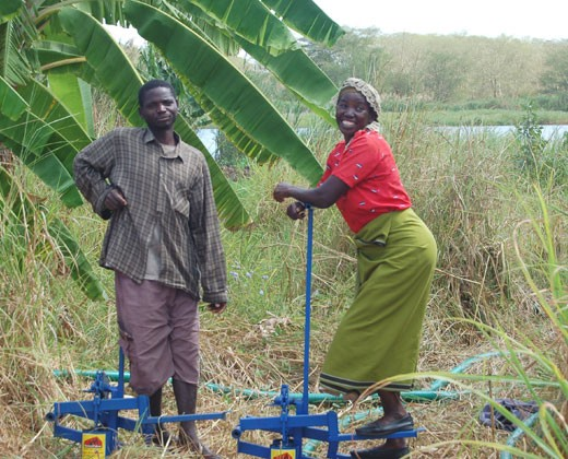 Treadle pumps allow the people of Southern Malawi to use their own foot power to pull water from the Shire River to irrigate the