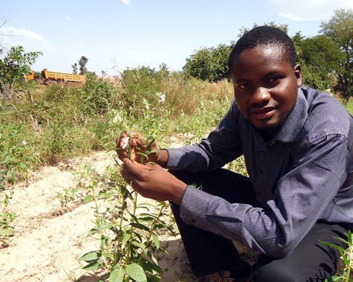 A participant in a Malian youth entrepreneur program supported by USAID gives a land investment tour.