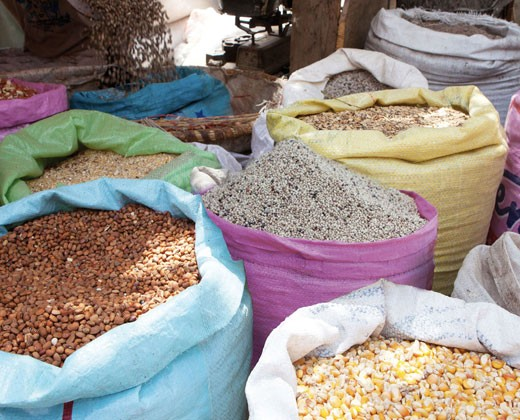 Locally produced grains, including corn, sorghum and cow peas, for sale in a Senegal market