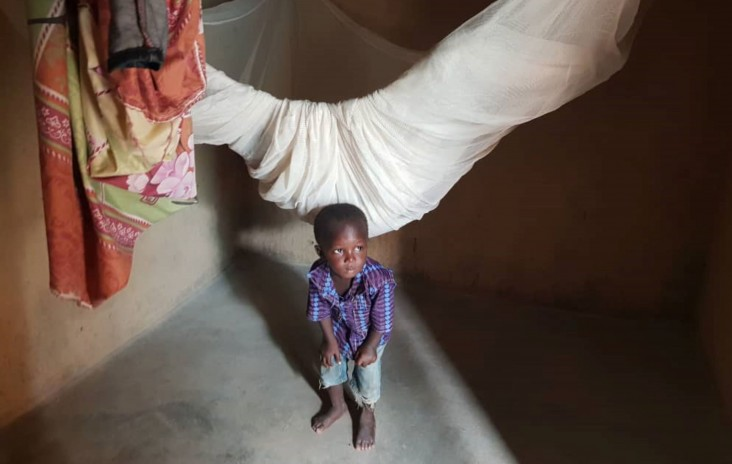 A child stands beneath his mosquito net in Burkina Faso