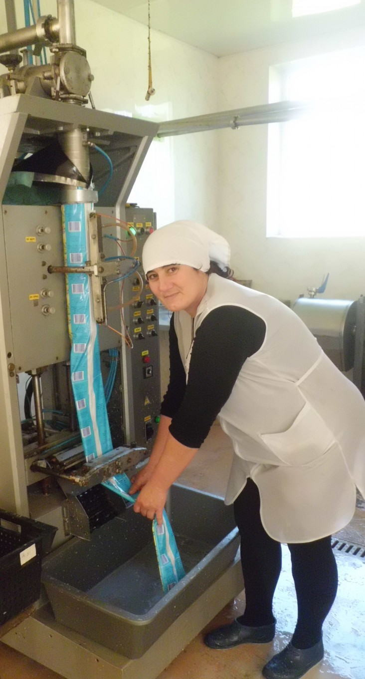 A Molochny Krai employee monitors the new milk processing line using equipment purchased with the support of a USAID AgroInvest