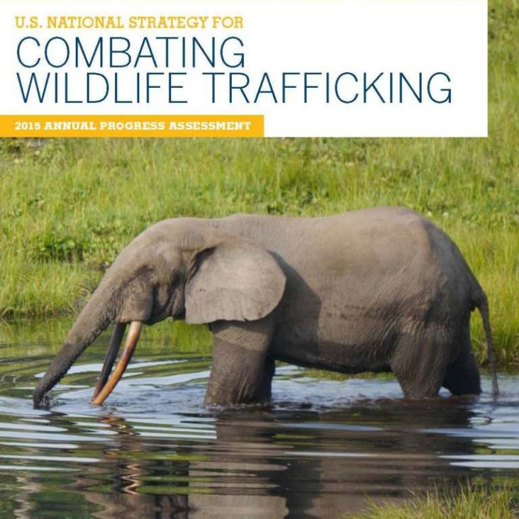 2015 Progress Assessment: U.S. National Strategy to Combat Wildlife Trafficking