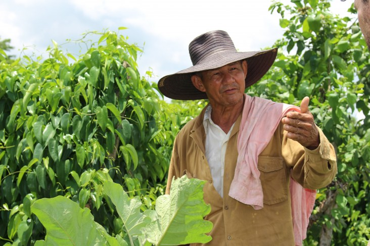 A farmer in San Rafael, Montes de Maria in northern Colombia