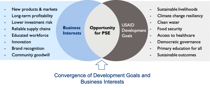 Convergence of Development Goals and Business Interests