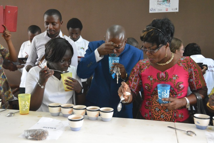 A USAID local trainee coaches on cupping