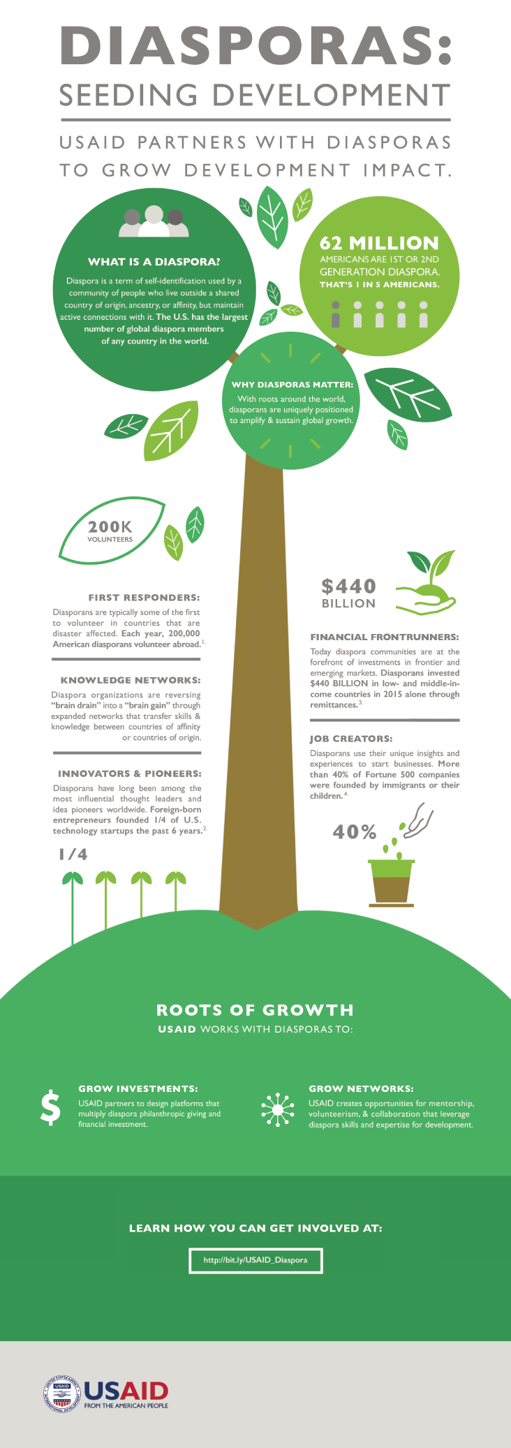 Diasporas: Seeding Impact Infographic. See below for full text