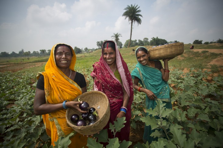 Geeta Devi, Sumitra Devi and Mina Devi are women farmers in the Banka District of Bihar, one of the poorest districts in India.