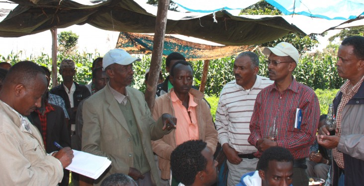 Farmer Bedasa Ofosea meets with community members and Ministry of Agriculture representatives.