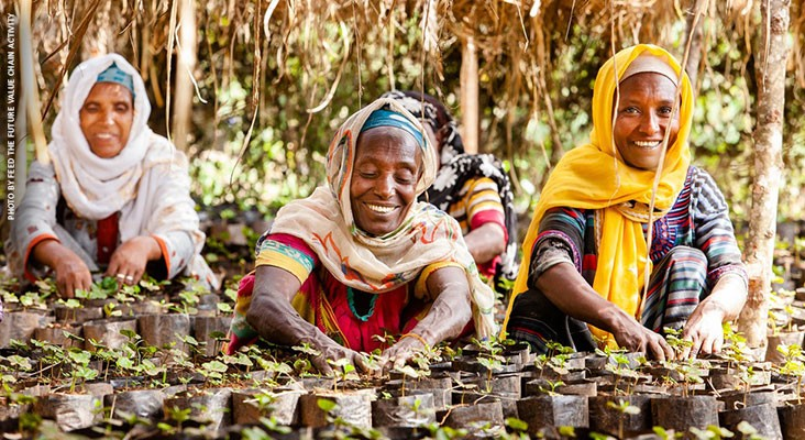 Image of Ethiopian women coffee growers