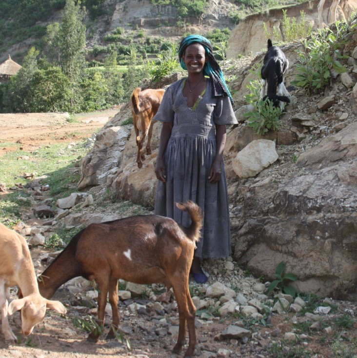Tirawork Ayele stands with her goats—important nutrition and income assets for her family.