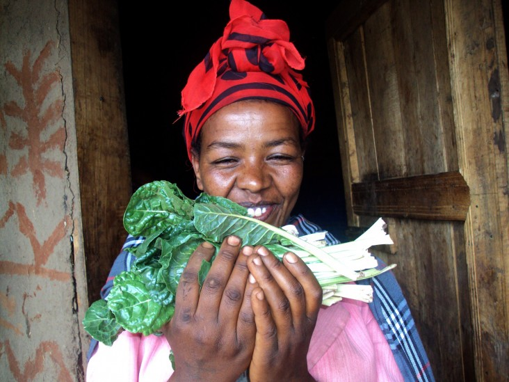 Jemanesh Debela, a 28-year-old mother of two, holds the Swiss chard that she grows in her homestead garden.