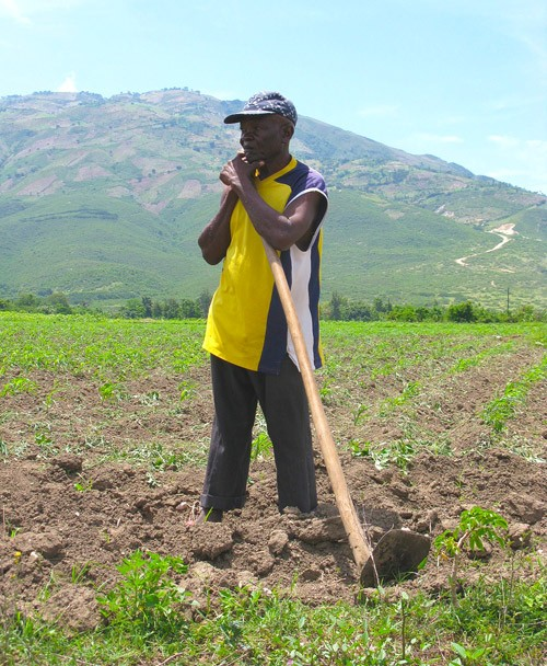 A Haitian man works in a field as part of the Watershed Initiative for National Natural Environmental Resources (WINNER) project
