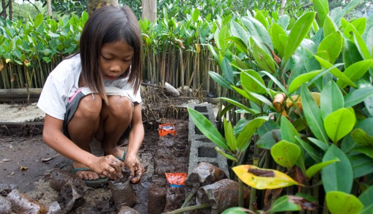 Girl planting mangroves in Indonesia