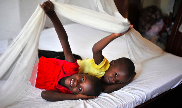 Children smile from beneath an insecticide-treated net