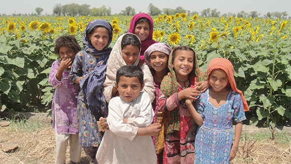 Happy children play in the fields of sunflowers, which were grown through USAID/Pakistan's Sindh Agriculture Recovery Program.