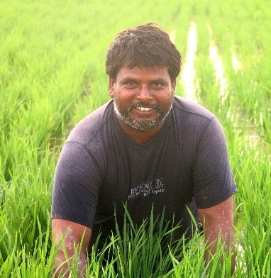 Ramawadh Chaudhary in his wheat field