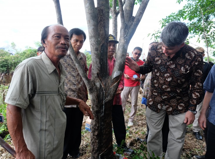 Deputy Chief of Mission Brian McFeeters taps a rubber tree with local farmers.