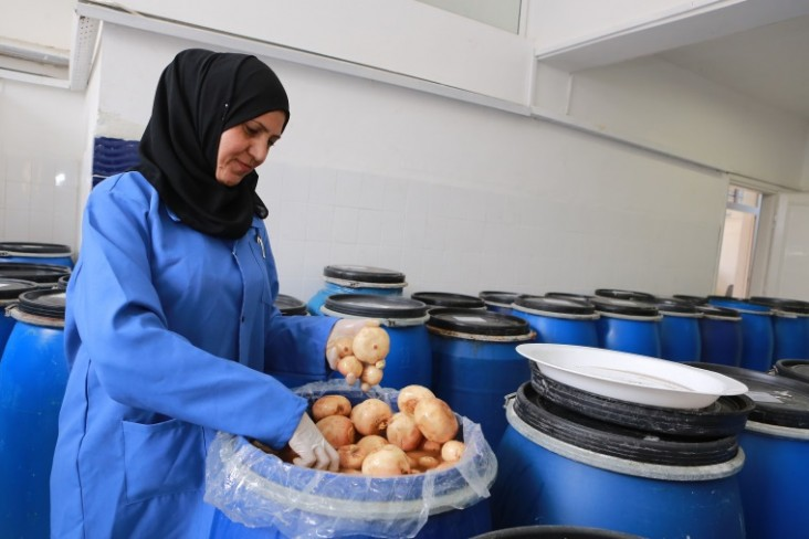A woman working at a local food processing micro business supported by USAID LENS sorts vegetables to make pickles.