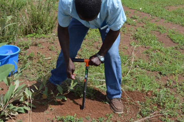 George Awuni, Soybean Innovation Lab SMART Farm manager, collects soil samples in a field plot at the Savanna Agricultural Research Institute in Wa, Ghana.