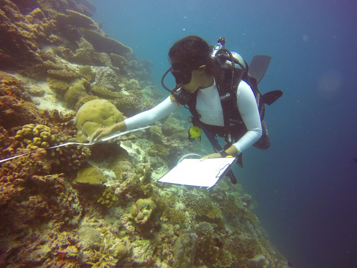 A citizen scientist in action.