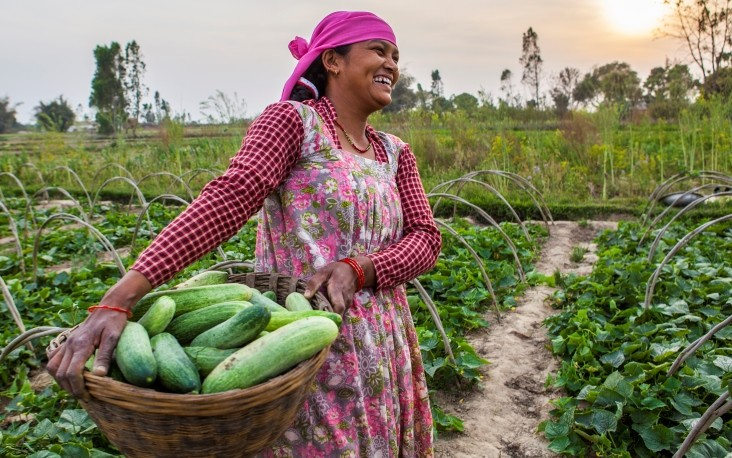 Image of woman vegetable farmer in Nepal