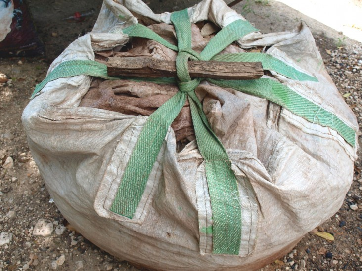 A bag of illegal lumber at the National Council for Protected Areas
