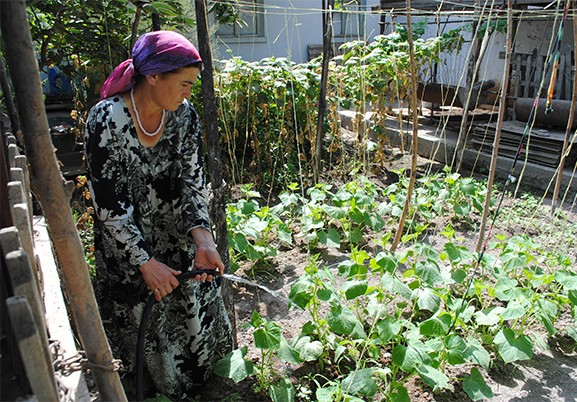 Surayo Rajabova has more time to take care of her garden now that she doesn't have to fetch water everyday.
