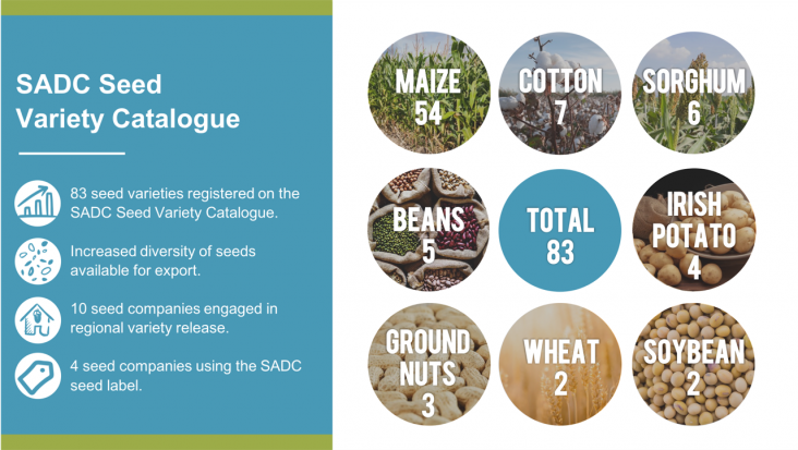 SADC Seed Variety Catalogue: total 83, maize 54, cotton 7, sorghum 6, beans 5,  irish potato 4, ground nuts 3, wheat 2, soybean 2. 83 seed varieties, increased diversity of seeds available for export, 10 seed companies engaged in regional variety release, 4 seed companies usinf the SADC seed label