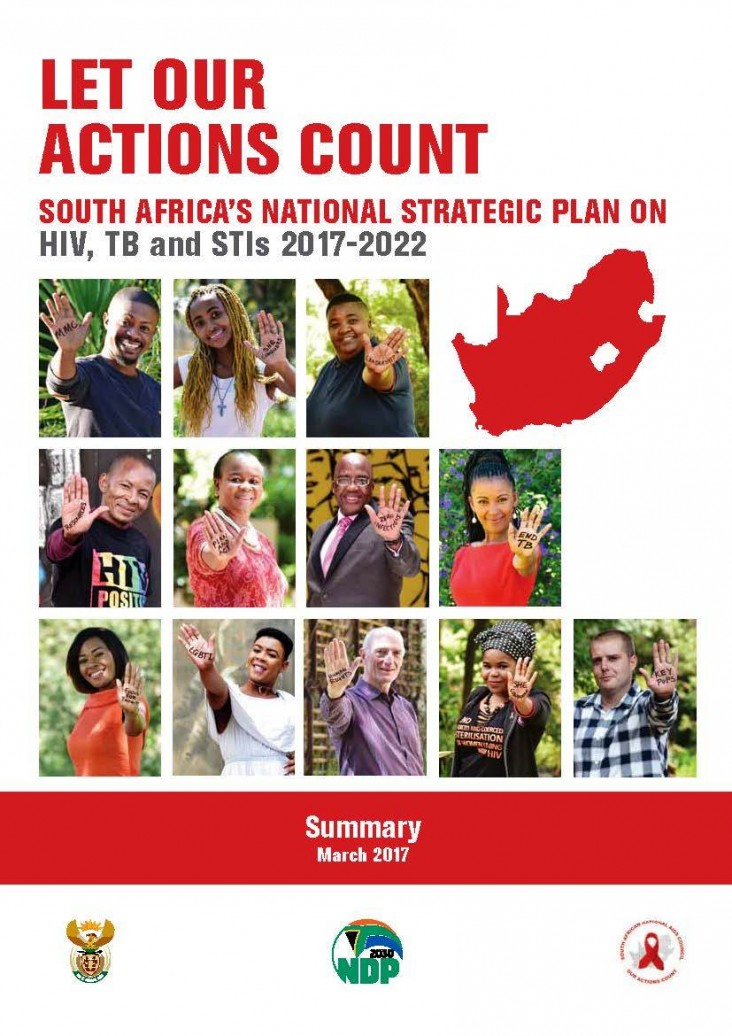 Screenshot of the South Africa Plan for HIB,TB, STI 2017-2022