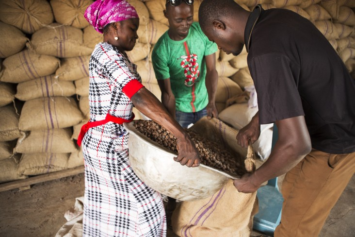 Between June 2016 and March 2021, the GSA facilitated the export of 529,772MT of shea products worth over $311 million. This means more jobs, especially for women in West Africa, more income to shea kernel collectors, and more quality skin care in the U.S.