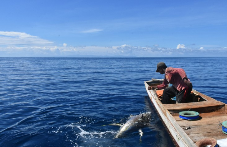 As part of USAID's fair trade program training in Indonesia, fishers learn about endangered, threatened, and protected species, like sharks and turtles, and how to protect them while fishing.