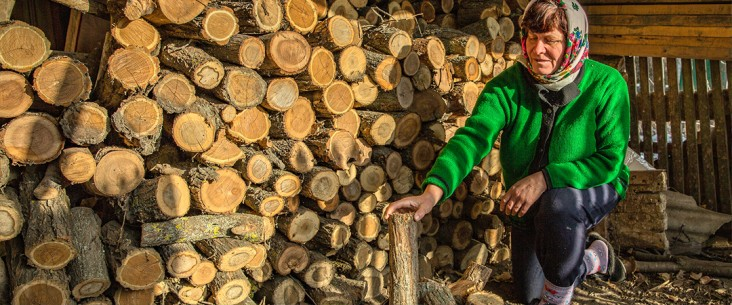 A woman kneels beside a woodpile