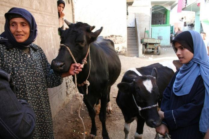 A staff member of the Information, Education and Communication Center in Egypt speaks with a rural woman and her daughter about
