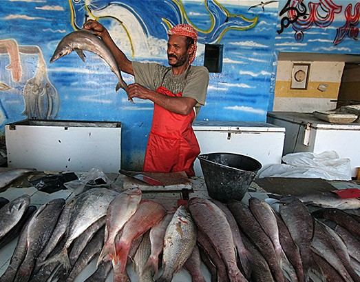 A fish seller in Yemen proudly displays his wares. Fish create jobs for over half a billion people, 95 percent of whom are from