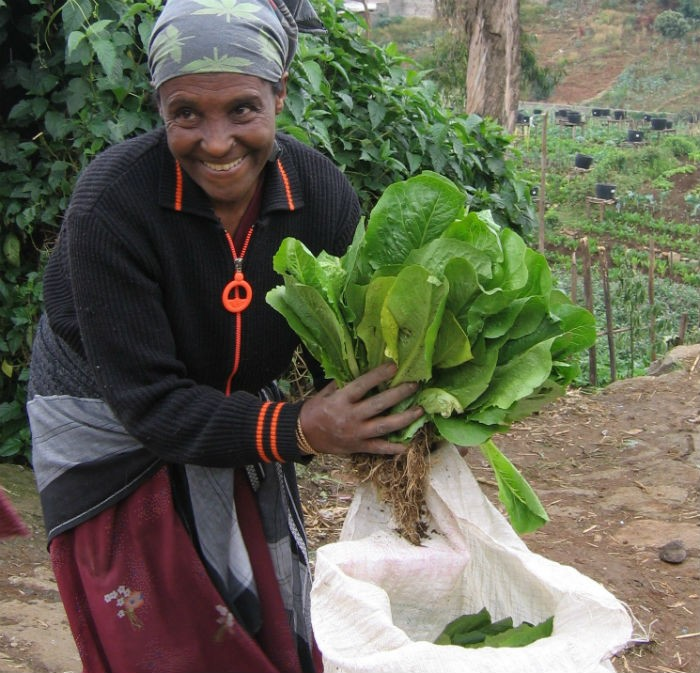 Woman with her salad harvest.