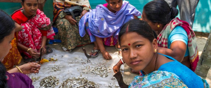 Women cleaning fish in Bangladesh