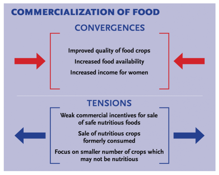 Graphic showing how convergences affect commericalization of food and how commercialization causes tension
