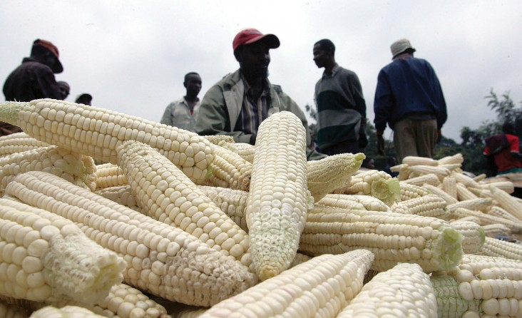 A Kenyan food vendor sells maize at his shop near Nairobi. Kenya's Competition Authority found that a cluster of families coordi