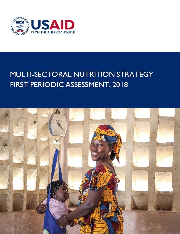 USAID Multi-sectoral Nutrition Strategy (2014-2025) cover image