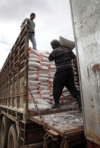 Workers load a truck with flour destined for bakeries in Aleppo Governorate.