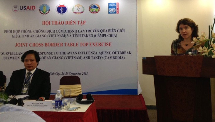 USAID Office of Health Director Laurel Fain addresses the workshop.