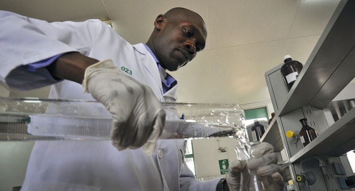 An analyst at the National Quality Control Laboratory in Kenya conducts a test on a pharmaceutical sample.