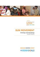 SUN Movement Strategy and Roadmap (2016-2020)