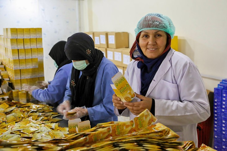 Mrs. Malika Qanih, Owner of Sun Pharma, Supervises Work Activities Her Plant in Kabul, Afghanistan