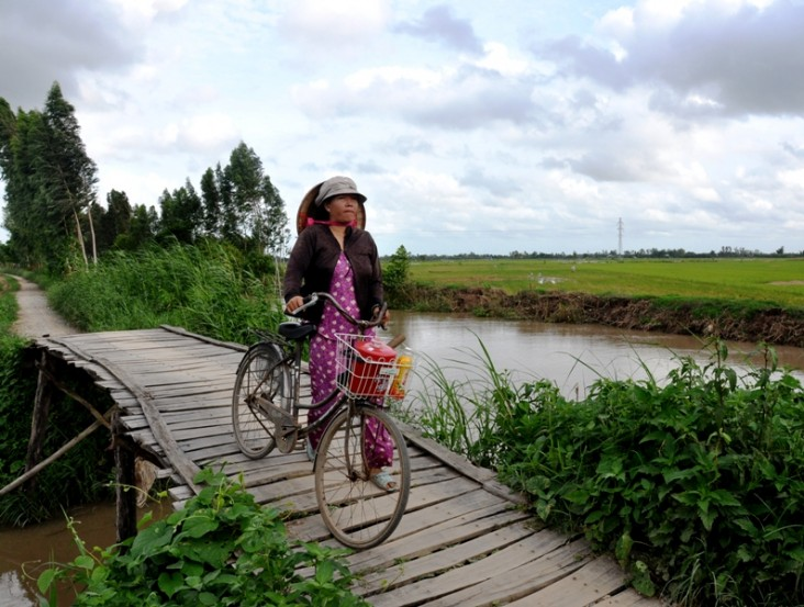 A Vietnamese woman makes her way home in the Mekong Delta.