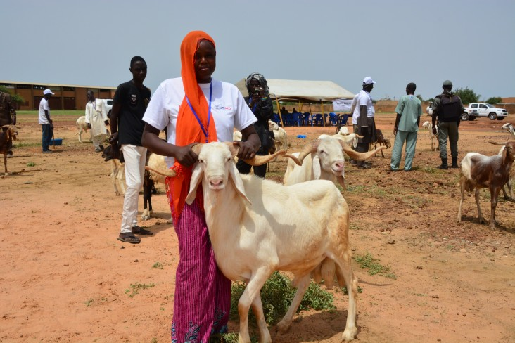 A Nigerien woman shows off a sheep she raised and sold