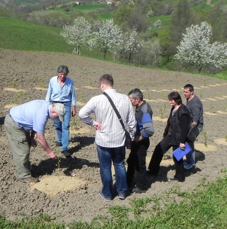 Kosovo blueberries - USAID expert explains to climatic conditions for growing blueberries