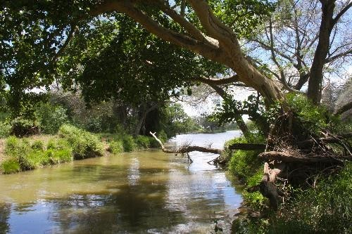 AWARD aims to increase resiliency in the Olifants Catchment in the Limpopo River Basin.
