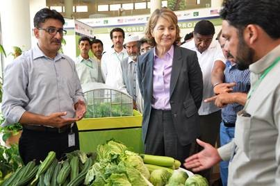 Modernizing Agriculture from the Ground Up: United States Supports Pakistan's Vegetable Farmers
