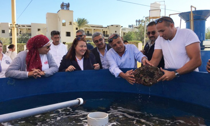 U.S. Supports Sustainable Tourism in Egypt's Red Sea Governorate | Press  Release | Egypt | U.S. Agency for International Development